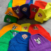 6 Pairs Embroidered Dog Ankle Low Cut Socks Box Bundle Pack